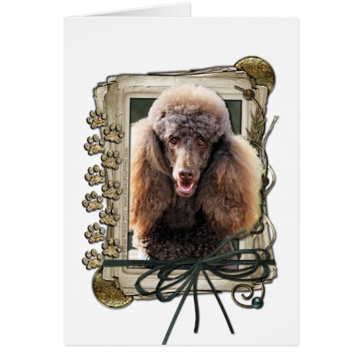 Fathers Day - Stone Paws - Poodle - Chocolate Greeting Card