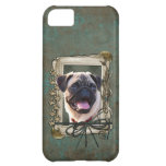 Fathers Day - Stone Paws - Pug Case For iPhone 5C