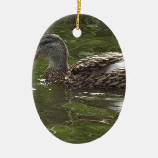 Fav little duckie christmas ornament