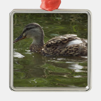 Fav little duckie Silver-Colored square decoration
