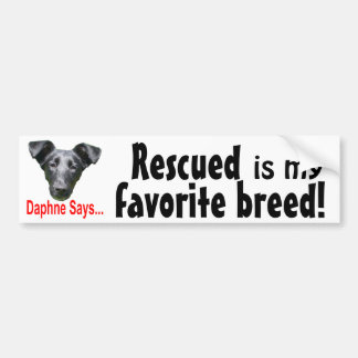Favorite breed bumper stickers