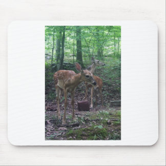 Fawn and Momma Mousepad
