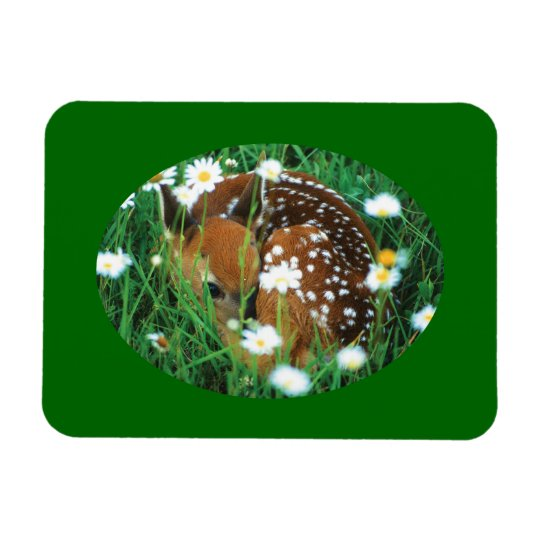 fawn and wildflowers rectangular photo magnet
