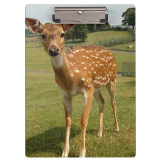 Fawn Baby Deer Clipboards