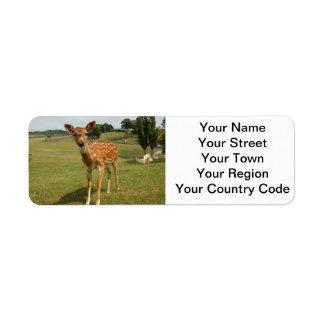 Fawn Baby Deer Return Address Label