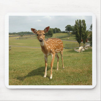 Fawn Baby Deer Mouse Pads