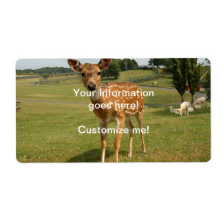 Fawn Baby Deer Shipping Label