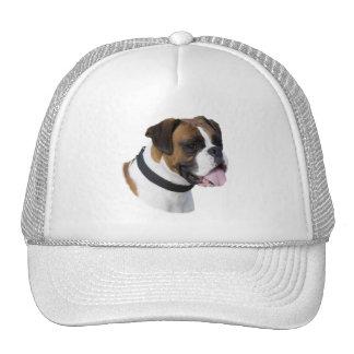 Fawn boxer dog portrait photo trucker hat