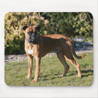 Fawn Boxer Dog Standing Mouse Pad