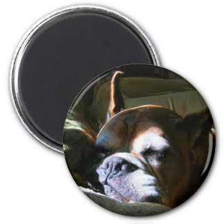 Fawn boxer magnet
