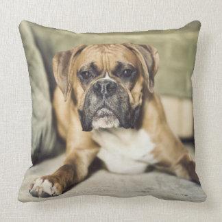 Fawn Boxer Pup Cushion
