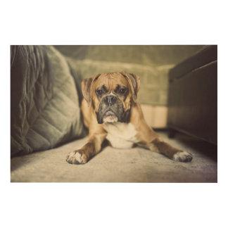 Fawn Boxer Pup Wood Wall Art