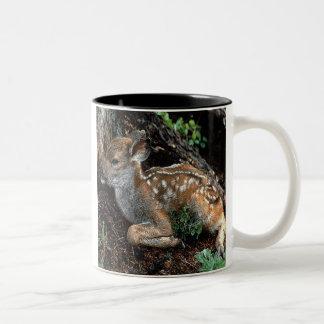 Fawn Coffee Mug 7