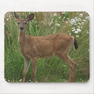 Fawn Deer Mousepad
