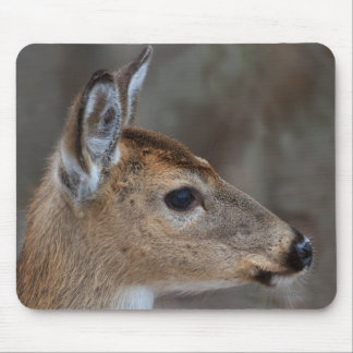 Fawn Face Mouse Pad