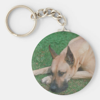 Fawn Great Dane Key Ring