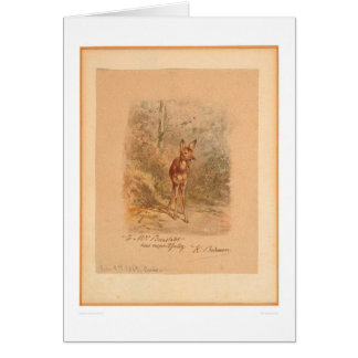 Fawn in Forest (0567A) Greeting Card