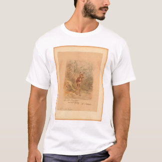 Fawn in Forest (0567A) T-Shirt