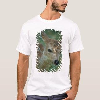 Fawn in Grass T-Shirt