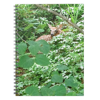 FAWN in Green Heart Leaves --- Spiral Notebook