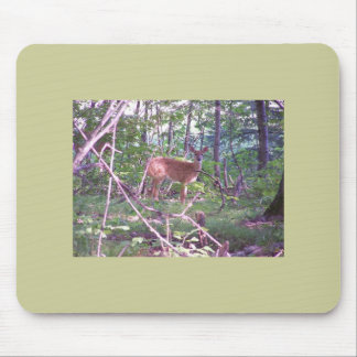 Fawn in the Forest Mousepad