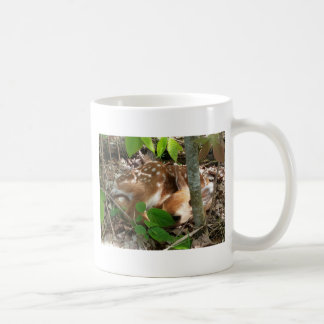 Fawn in the Woods Mugs