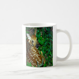 fawn in the woods. mug