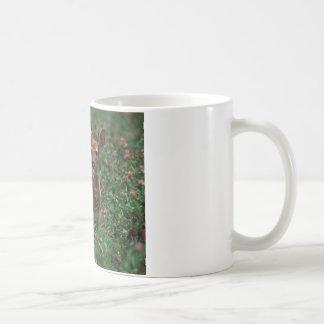 Fawn.jpg Basic White Mug
