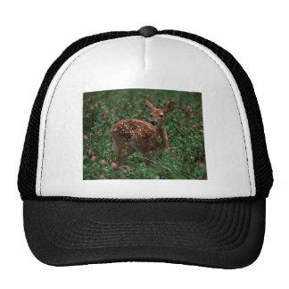Fawn jpg mesh hat
