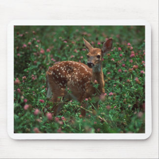 Fawn jpg mouse pad