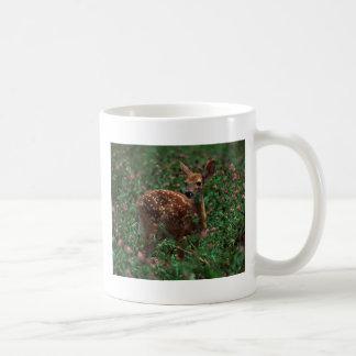 Fawn.jpg Coffee Mug