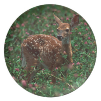 Fawn.jpg Party Plate
