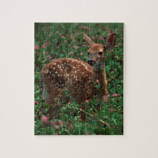 Fawn.jpg Puzzles