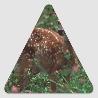 Fawn.jpg Triangle Sticker