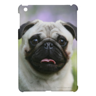Fawn Pug on Alert iPad Mini Cases