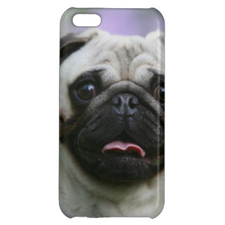 Fawn Pug on Alert iPhone 5C Covers