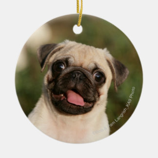 Fawn Pug Puppy Panting Christmas Ornament
