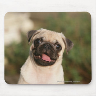 Fawn Pug Puppy Panting Mouse Pad