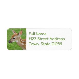 Fawn Return Address Ornament Return Address Label