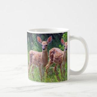 Fawn Twins in the Hawkweed Mug
