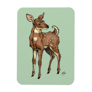 Fawn with Mint background Magnet