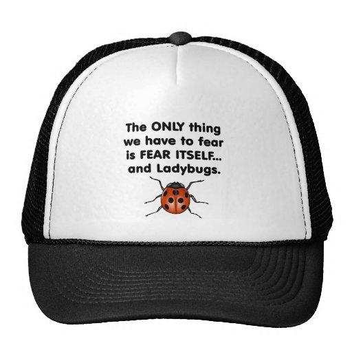 Fear Itself Ladybugs Mesh Hat