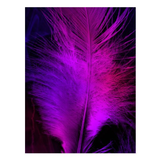 feather beautiful.jpg postcard
