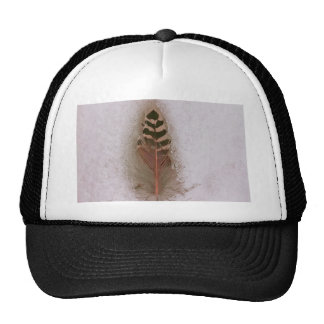 feather mesh hats