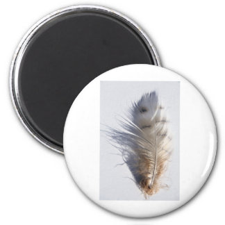Feather Refrigerator Magnet