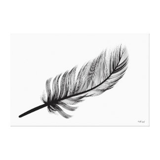 feather series canvas print