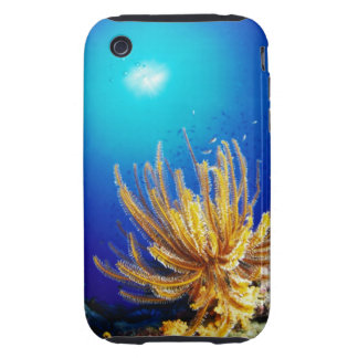 Feather star iPhone 3 tough cases