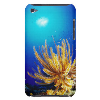 Feather star iPod touch cover