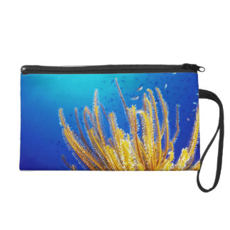 Feather star wristlet purse
