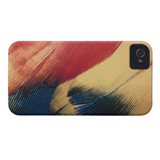 Feather surface 3 iPhone 4 cover